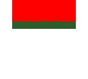 Papa John's China